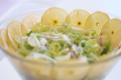 New Recipe on theglobalgirl.com: Raw vegan fennel apple salad
