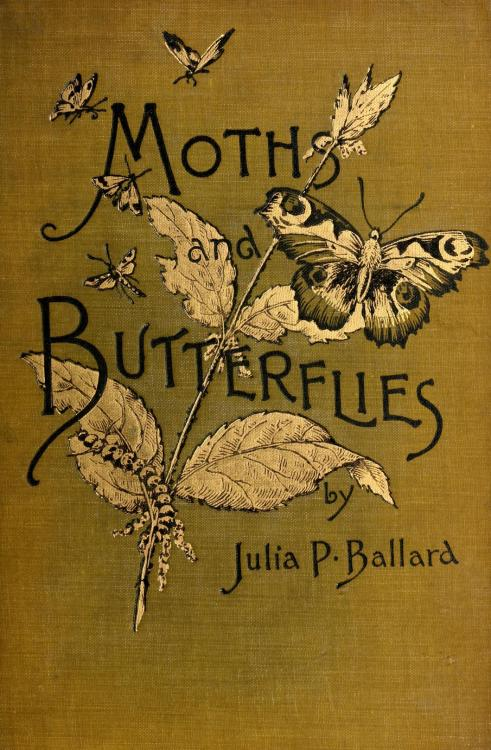 geisterseher:  Julia P. Ballard, Among the Moths and Butterflies (1908)