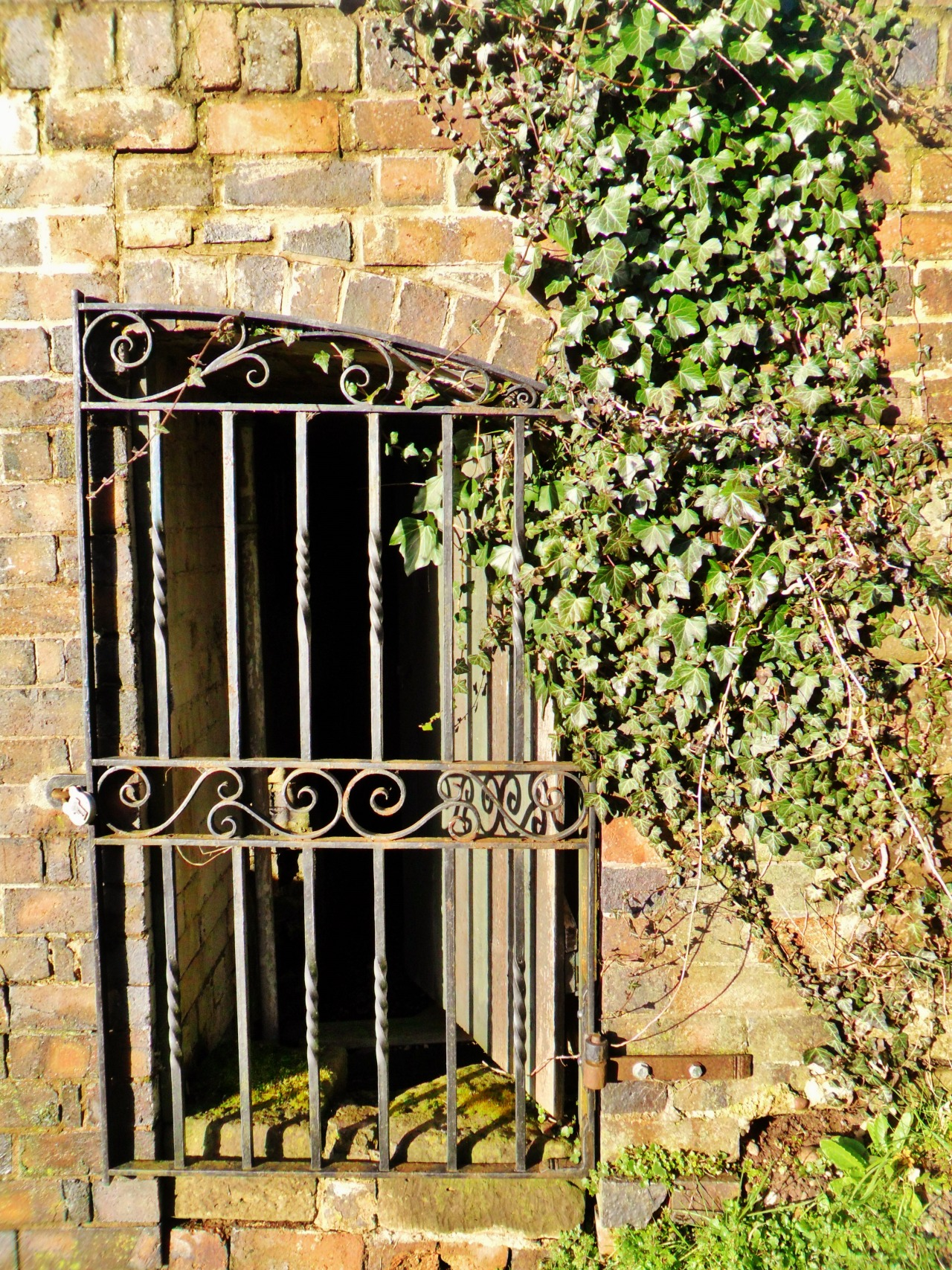 Ornate gate to waterwheel house overgrown with Ivy, Middleton Hall, Warwickshire  England