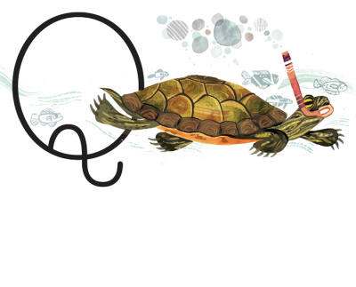 paperalligator:  A recent illustration for Smithsonian magazine on how long turtles can swim underwater before coming up for air…