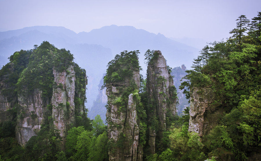 "wild-earth:  ""Zhangjiajie Mountain"" by David"