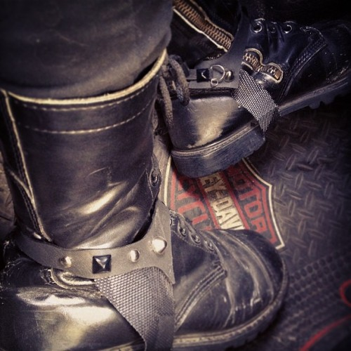 #bootstraps #boots #combatboots #shoes #shoeaccessories #accessories #harley #harleydavidson #inthecar #chevy #cavalier #leather #gay #leatherman #kurtfowl