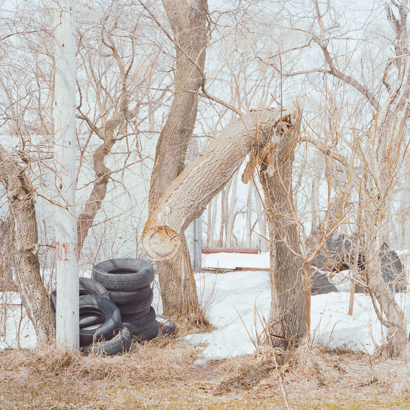 This is a broken tree and a pile of rubber tires.