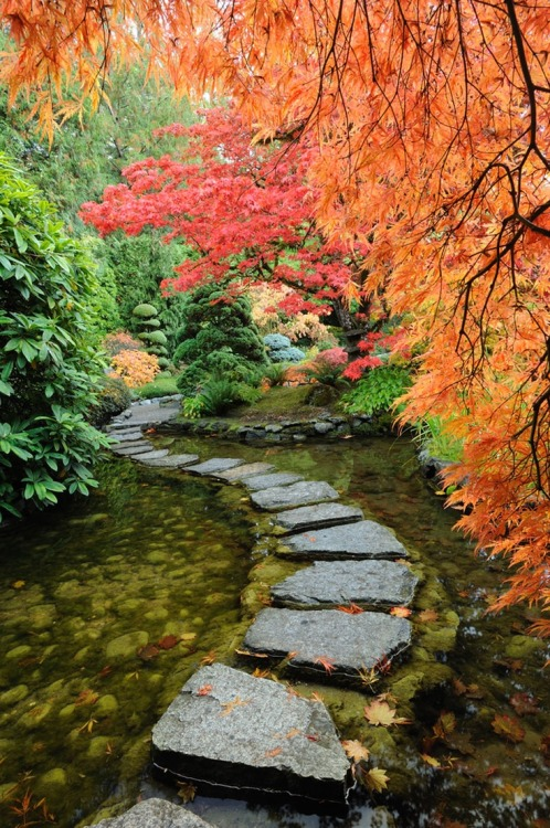 matsvri:  Tranquil Japanese Garden ✕ by 2009fotofriends