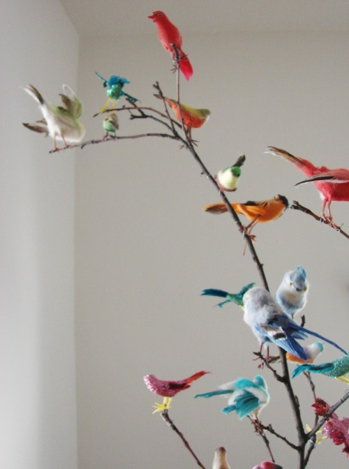 openarms: Vintage bird collection (via hownowdesign)