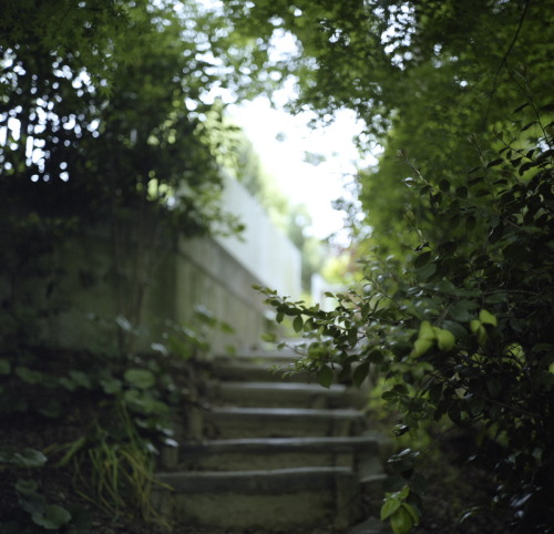 openarms: path to the secret garden (via komehachi888)