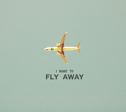 Fly Away - Lenny Kravitz(photo via)