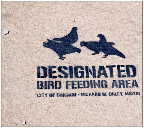 "Designated Bird Feeding Area (via swanksalot) ""Stencil in front of the Haymarket Memorial statue.  Not officially endorsed by The Mayor."""