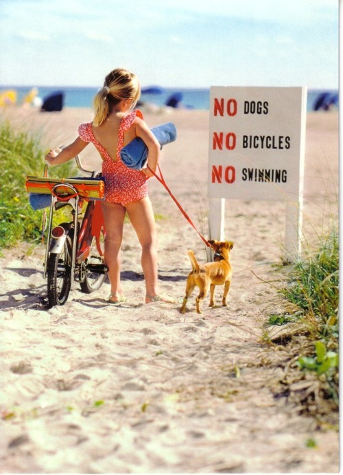 pointlessinc: NO DOGS, NO BICYLES, NO SWIMMING al carajo con ese cartelprendelo fueho piba