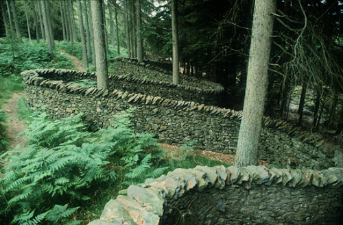 slightly:  Andy Goldsworthy, Taking A Wall For A Walk
