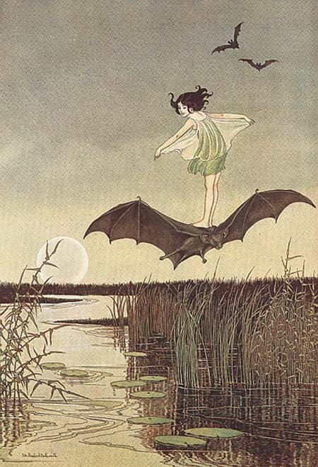 "treatkor:  bellechoses:  suicideblonde: Ida Rentoul Outhwaite ""The Enchanted Forest by Grenbry Outhwaite"" (1921)"