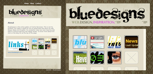 www.bluedesigns.com