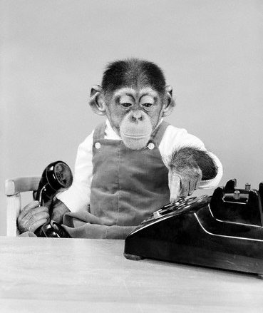 monkeypants:  Monkey business 1950's