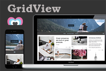 GridViewPhotoVideoMusic