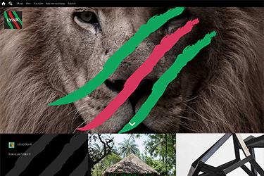 Lynx Africa 18th Anniversary