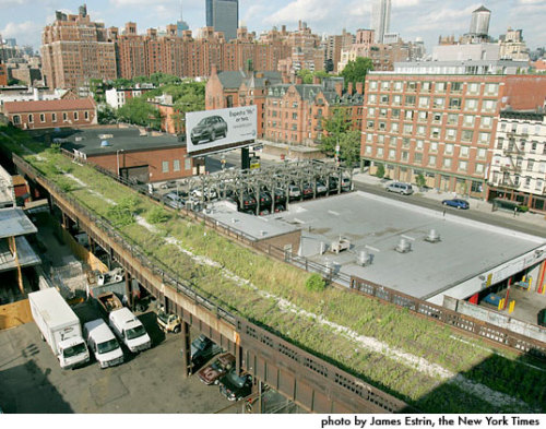 Inhabitat » New York's High Line Park in the Sky Click through for many more great pictures!