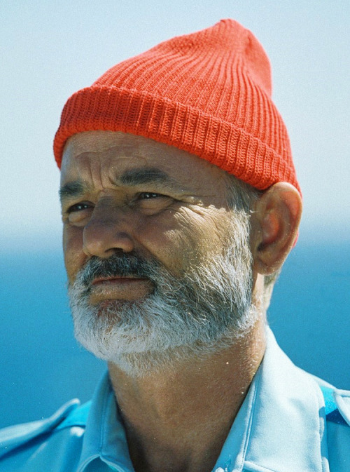 dubliner:  waxandmilk: Epic Beards: Bill Murray/Steve Zissou What a shot!  instant reblog.