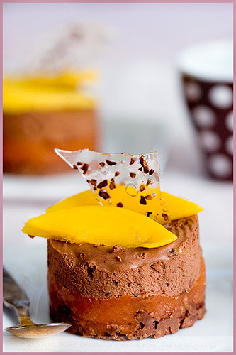 Dark Chocolate Mousse with Grapefruit Jelly, Mango and Hazelnut Biscuit