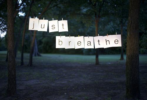 (via reeunderscore) sigue andando el camino por toda su vida. respira.