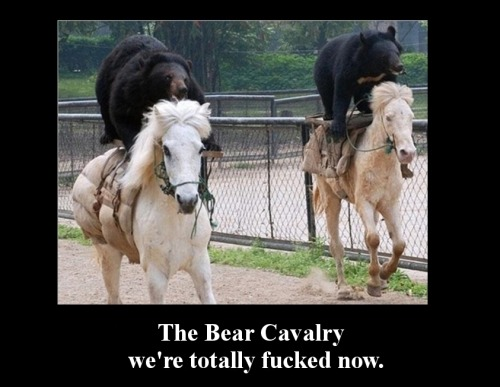The bear cavalry: We are totally fucked now.