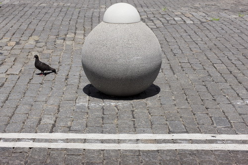 Bulbous Bollard and Bird