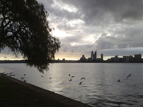 Late Afternoon in Perth (via aussiestompy)