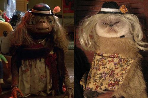 hidesawell: glamourcats: good one. WINSTON!!!! :DDDD