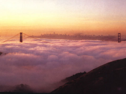 veryvoo:  Typical fog scene over San Francisco while the sun rises. But who would win in a battle, fog or sun?