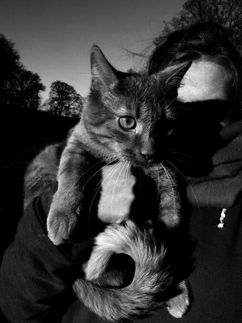 Me & Django in the park