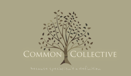 A Common Collective - because special isn't a definition