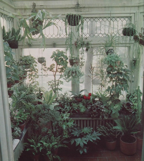 imminentenvironment:  (via iamcollectinghomeinspiration)