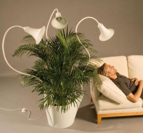 and even be the sole source of light for low to medium light plant. Black Bedroom Furniture Sets. Home Design Ideas