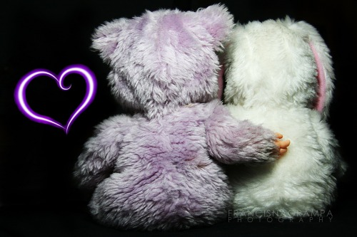 "My cute baby bunny and baby bear stuff toy showing some ""L-O-V-E""."