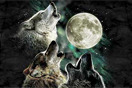 Top 9 Three Wolf Moon T-Shirt Parodies - Urlesque
