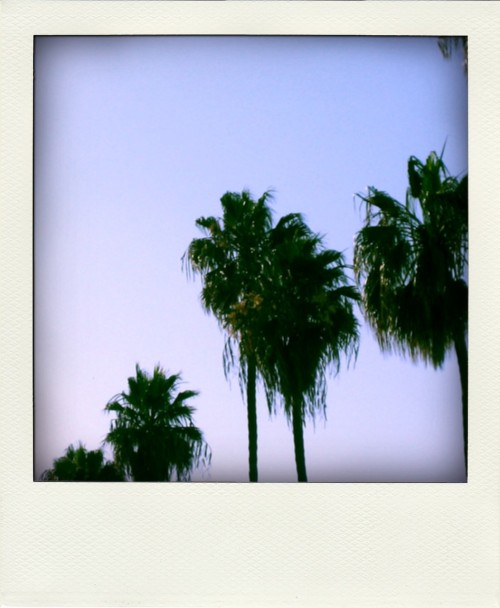 indexoftheextraordinary:  Los Angeles, Summer 2009