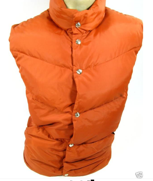 It's On Ebay Vintage REI down vest in rust. Ends today.