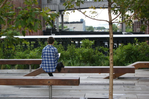 High Line, New York via tumblelikeyougiveadamn: efj