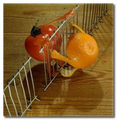 applearts:  tomato and orange. a perfect combo.