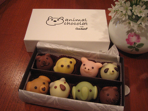This ain't the usual cake fare- but these chocolate animals from Japan are too cute not to share!