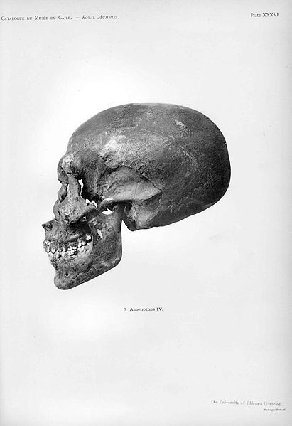 G. Elliot Smith~Unknown egyptian skull,1912