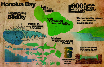 datavis:  Honolua Bay Infographic (via Matthew Lawless)