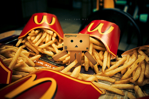 lovemidori:  Danbo getting all greedy over McD fries. (via [ embr ])