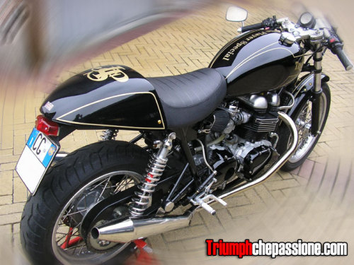 (via overshadowed) Awesome. JPL Triumph? Awesome. I love the gold and black.