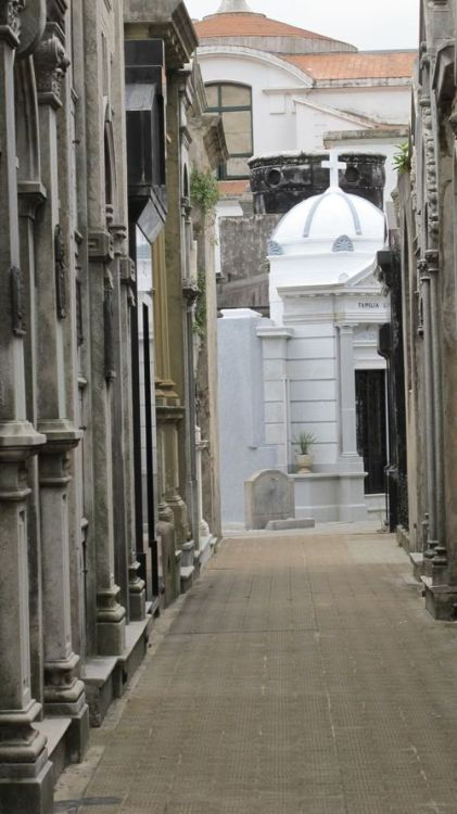 we visited the cemetery in recoleta, buenos aires today. super cool place. Gotham Gal: Christmas in Buenos Aires
