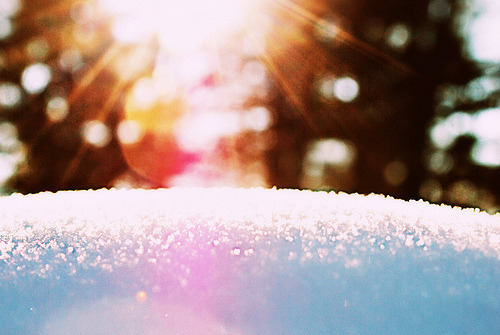 kari-shma:  winter light (via mainemomma ~ kristin)