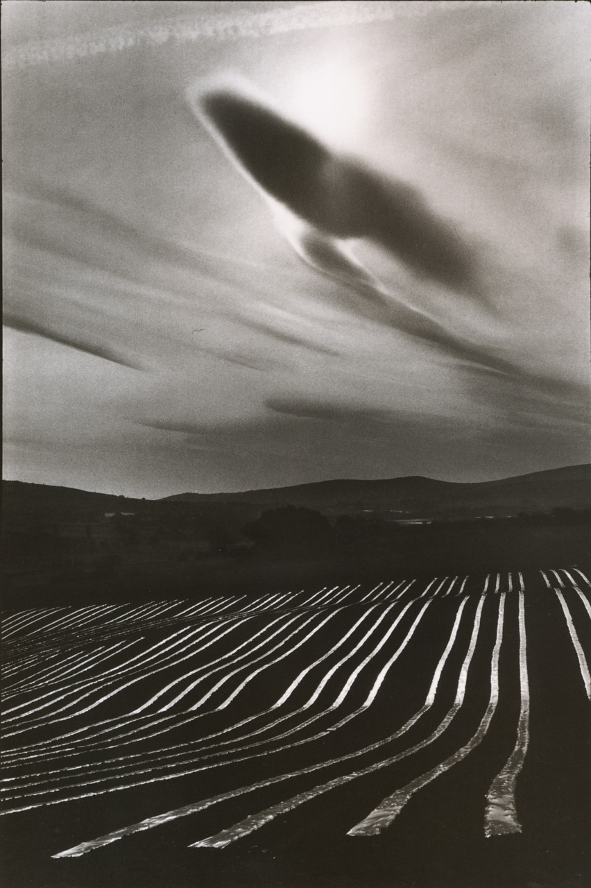 "crashinglybeautiful:  Martine Franck, ""Le Luberon, Alpes-de-Haute,"" Provence, France 1976 from One Day to the Next series (from melisaki & liquidnight)"