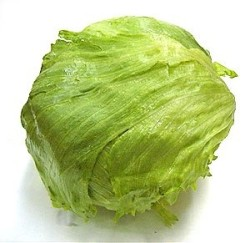 Ice-burg lettuce diversion safe with hidden compartment - Source: http://www.bimbambanana.com/index.php?p=iceberg&side=visProd&prod_id=328