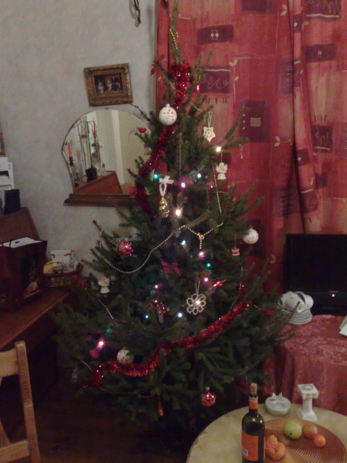 …and we got a Christmas tree (5 days ago already, to be honest. It's staying until the 6th of January)