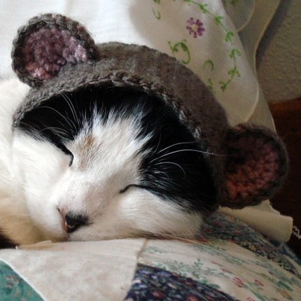 Pet Costume Bear Hat by xmoonbloom on Etsy Also available are the bunny, monster and frog.