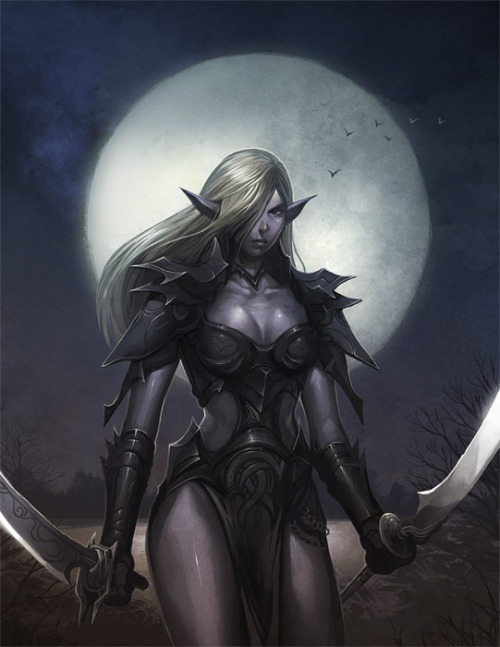 Dark Elf via nJoo (deviantART)